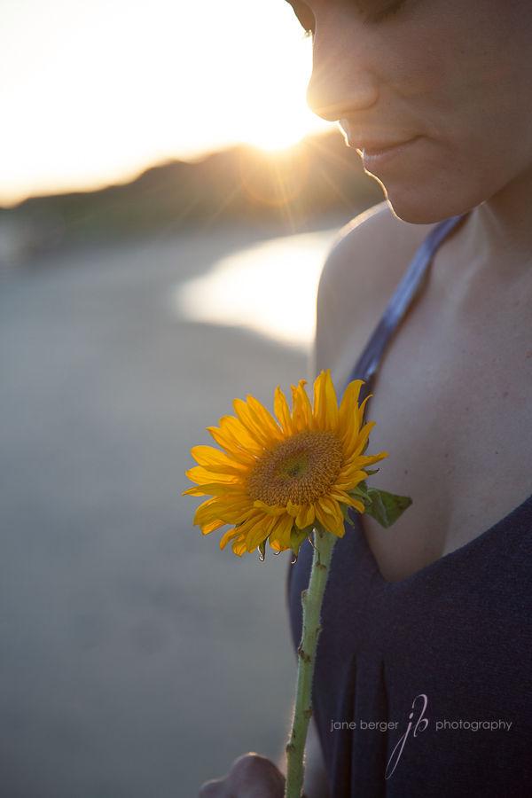sunburst, sunflower