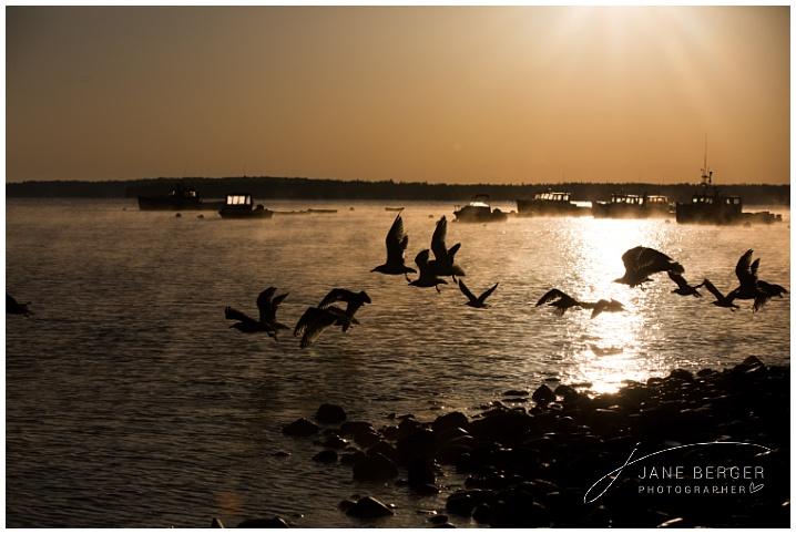 sunrise lincolnville