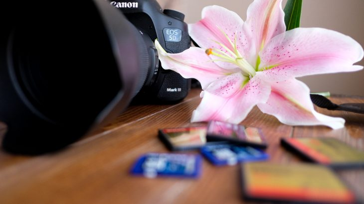 canon-camera-lilies-cards-maine-photographer